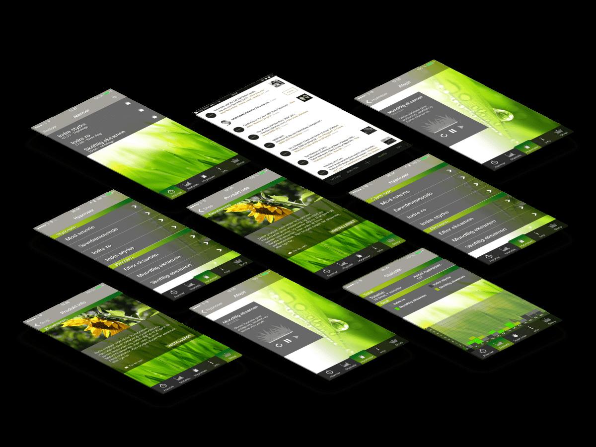 Eksamensro app skærmbilleder case